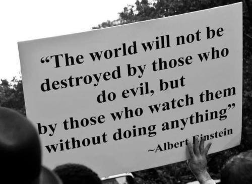 """The world will not be destroyed by those who do evil, but by those who watch them without doing anything."" - Albert Einstein"